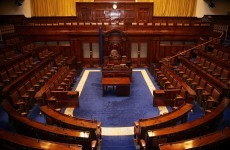 Ushers intervene to stop attempted Dáil invasion