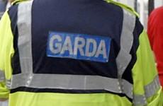 Gardaí find suspected human bone on riverbank