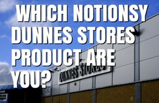 Which Notionsy Dunnes Stores Product Are You?