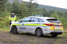 Man released without charge in Dublin Mountains murder investigation