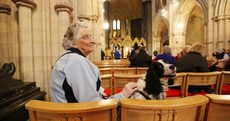 They held a mass in Christ Church for therapy dogs today and the pictures are WONDERFUL