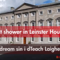 14 words and phrases as Gaeilge to get you through budget day
