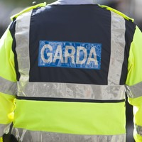 Gardaí raid 20 properties across Dublin in major gangland crackdown
