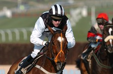 Two-time Cheltenham Champion Chase winner Moscow Flyer dies