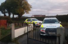 Man arrested after gardaí search 6 premises in 3 Leinster counties