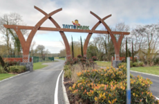 Nine people injured after House of Horrors staircase collapse at Tayto Park