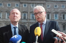 Poll: Should independent ministers be given a free vote on the Repeal the Eighth bill?