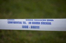 Investigation after two bombs found in derelict house on outskirts of Cavan town