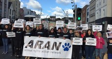 Protest against animal cruelty as only two people convicted of cruelty to animals so far this year