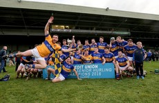 Patrickswell end 13-year wait for Limerick hurling title with a 19-point final win