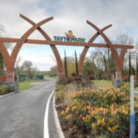 """""""The people behind us suddenly dropped"""": Witnesses describe Tayto Park stairs collapse"""