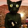 A man dressed up as his cat for Halloween and its reaction was perfect