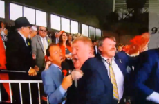 This Irish horse owner's ecstatic reaction to coming second in the Melbourne Cup is wonderful
