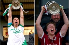 The Hogan brothers - Kilkenny senior winning captains with different clubs two years in a row