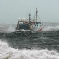 Irish Sea prawn fishery reopens - and other fish quotas increase