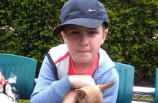 A little Tallaght boy with autism has made a heartfelt appeal for his lost dog