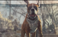 The John Lewis ad is the pick-me-up you need today