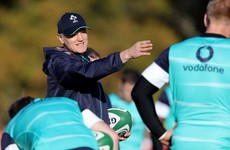 Schmidt available to Lions but only interested in Ireland's Japan tour