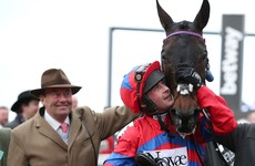 Cheltenham champion chaser Sprinter Sacre has been retired after leg injury