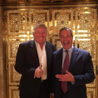 Nigel Farage pictured with Donald Trump inside gold lift