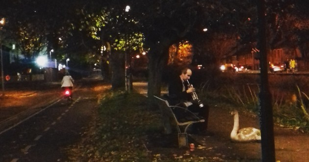 A mystery jazz player was spotted serenading a swan by the Grand Canal last night