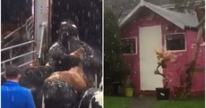 November surprise? People have been rushing to their phones to document the first snow