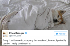 Just 15 tweets that will speak to anyone who hates going out
