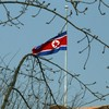 Kim Jong Il tributes trickle in from other countries