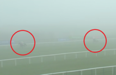 Nichols Canyon wins with clinical performance in the Punchestown fog (trust us!)