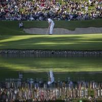 In the swing: golf's big winners in 2011