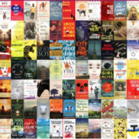 Seven Irish authors make the longlist for €100,000 Dublin literary prize