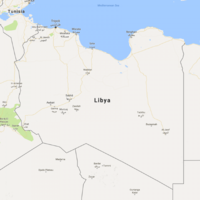 At least 20 killed in fierce fighting in Libya after incident 'sparked by monkey attack'