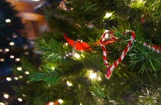 7 ways to have a green Christmas this year
