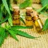 Debate Room: Should we legalise medicinal cannabis?