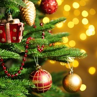 Poll: When's the right time to put up your Christmas tree?