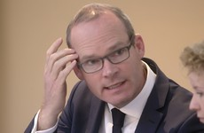 Simon Coveney: 'You don't wash your car with Ballygowan, because if you do you pay for it'