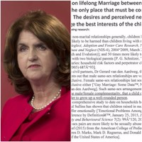 Burton outraged at letter to TDs claiming children adopted by same-sex couples are more likely to be abused