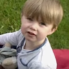 This heartbreaking video should stop drink drivers in their tracks this Christmas