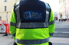 Garda gets €250k damages after being forced to retire early due to 'vicious' pub assault