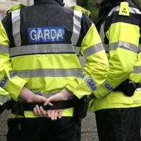 Man in his early 20s dies in road crash in Cork