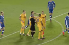 Irish striker Doyle and team-mate Beckford to refund fans after fighting with each other