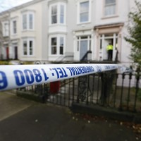 Man accused of stabbing mother to death was 'unable to refrain from his actions'
