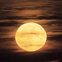 Stargazers rejoice: There's another supermoon on the way