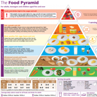 The new food pyramid: More fruit and veg, fewer carbohydrates (and no white bread)