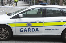 Garda awarded €25,000 after being rammed by man he previously saved from machete attack