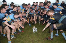 Here are the draws for the 2017 Sigerson and Fitzgibbon Cup competitions