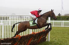 The New One lands third International Hurdle victory at Cheltenham