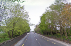 Gardaí want to speak to person who called them before pedestrian was killed