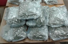Four arrested after gardaí seize €300k-worth of cannabis and cocaine
