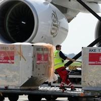 Irish homecomings back on track as UK baggage handlers call off Christmas strike
